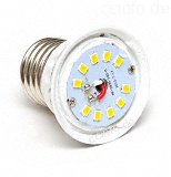 LEDs in LED-Lampe